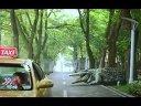 【中国怪物】百万巨鳄 Million Dollar Crocodiler 电影终极版预告片 2012