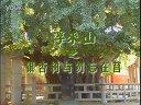 浮来山-银杏树与勿忘在莒视频