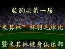 临朐县第一届米其林杯羽毛球比赛