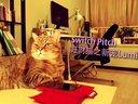 Alia_Li_Switch Pitch China