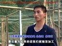 江西宜春德泰孔雀养殖场视频