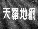 老电影【天罗地网·】