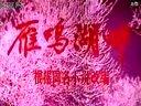 文革电影《雁鸣湖畔》1976(长影)全