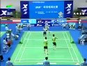 2005年第十届全运会羽毛球赛男团决赛陈其遒傅海峰VS蔡赟徐晨(3)