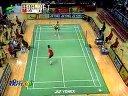 (播放效果差)2008年香港羽毛球公开赛男单半决赛陈金VS波萨那1