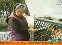 猕猴降服苏格兰牧羊犬当坐骑视频