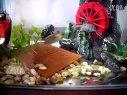 1草龟深水视频