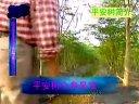 刘树平农民发明家新产品发财树视频