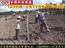 火龙果种植技术视频