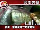 FUN4娱乐 2009 台湾 嫌疑犯逃亡更像野餐