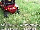 上海威之群电动轮椅1033美洲豹