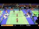 【直播】2013法国羽毛球公开赛 1/16决赛 男双比赛 羽球吧
