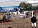 上海松声马术节杨教练骑白马上场