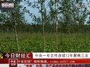 中央一号文件连续12年聚焦三农 农业股有望受益【中金视听】