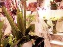 夏季婚纱:2015夏季婚纱系列花开倾城