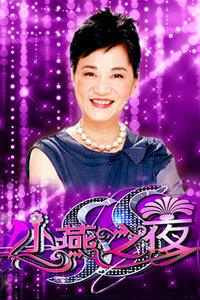 SS小燕之夜综艺海报