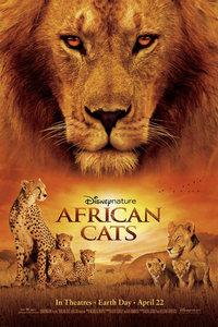 非洲猫科:勇气国度/大猫/African Cats