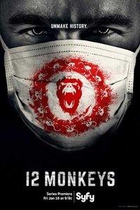 12只猴子第一季