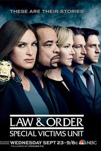 法律与秩序:特殊受害者第十七季