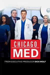 芝加哥医院第一季