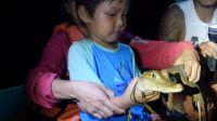 南极学前班(六):深夜乘船潜入亚马逊抓鳄鱼