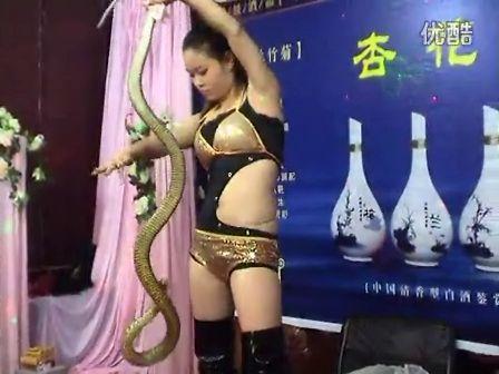 美女吞蛇 C 搜库