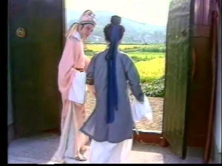 赵志刚-1991-庵堂认母-王文娟-越剧