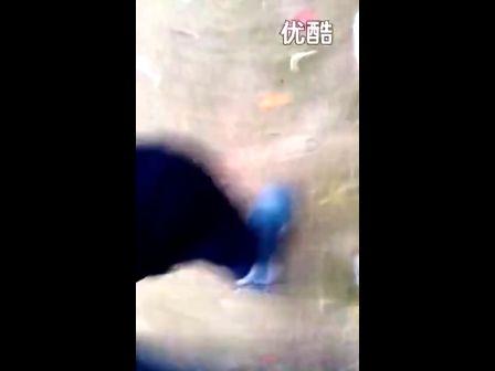 播放脱鞋晾脚老师_