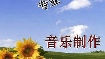 太湖美黑鸭子 – 搜库