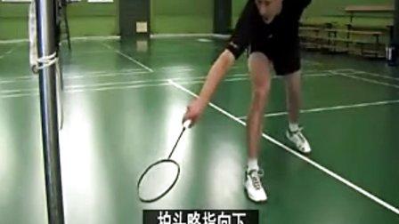 《拉斯姆森羽毛球视频》平抽球【微信教学号:公众充质间图片