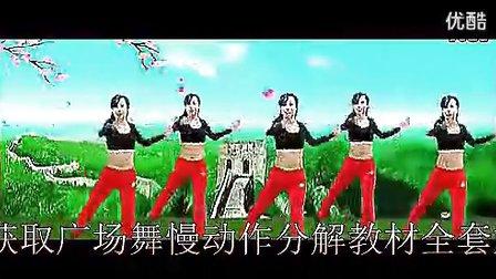 2013杨艺广场舞醉月亮