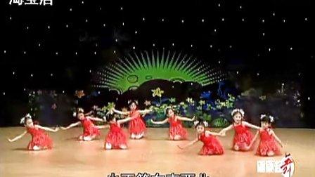 幼儿园中班舞蹈虫儿飞