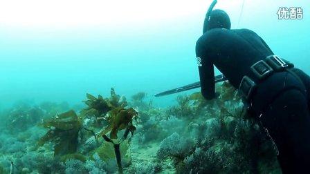 Harbor House Life(精华版)14墨西哥巴哈岛充满挑战的水域捕鱼