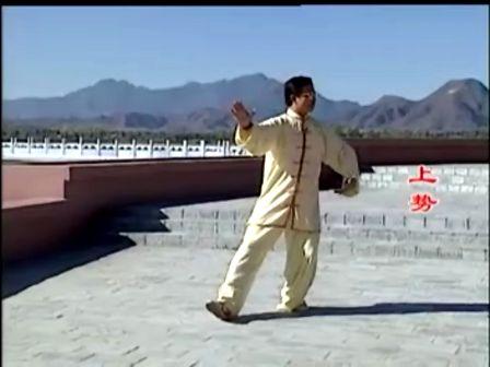 108式传统杨式太极拳教学视频