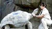 乌龟与女饲养员。。。我没邪恶。。。