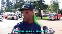 神级采访!!美国一次交通事故采访的妖娆黑哥