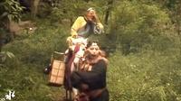 毁西游系列:猴子落榜记