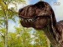 蘇教版六年級科學下冊第三單元 進化