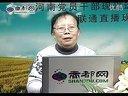 桃树的栽植与管理_标清视频