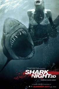 鲨鱼惊魂夜
