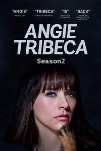 爆笑女警第二季