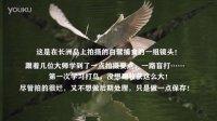 20160407學習打鳥-長洲島的白鷺
