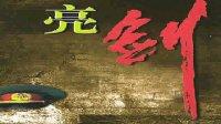亮劍73(小說演播)