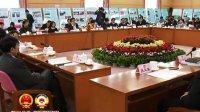推動文化發展繁榮 關注改善民生 代表繼續審議政府工作報告 120113 北京新聞