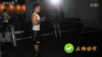 怎么把手臂練粗?健身教練培訓內部視頻(二)