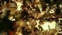 小本投资项目黄背木耳高产立体种植高产栽培技术