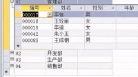 Access2010視頻教程第1章 數據庫和表4---表的操作詳細講解---舒洪凡