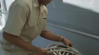 《噬人鲨大战食人鳄》船员说有大鲨鱼, 船长还不相信, 非要到船沉了才后悔