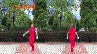 2017邵東跳跳樂第十三套快樂舞步健身操教學視頻完整版