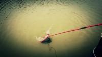 路亞釣鯰魚用什么餌海竿餌料配方路亞線組安裝圖解